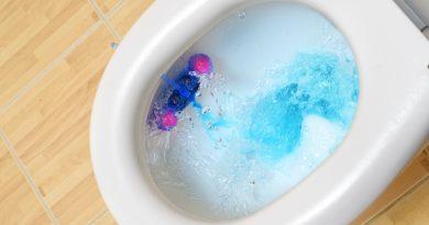 Toilet Flush Problems